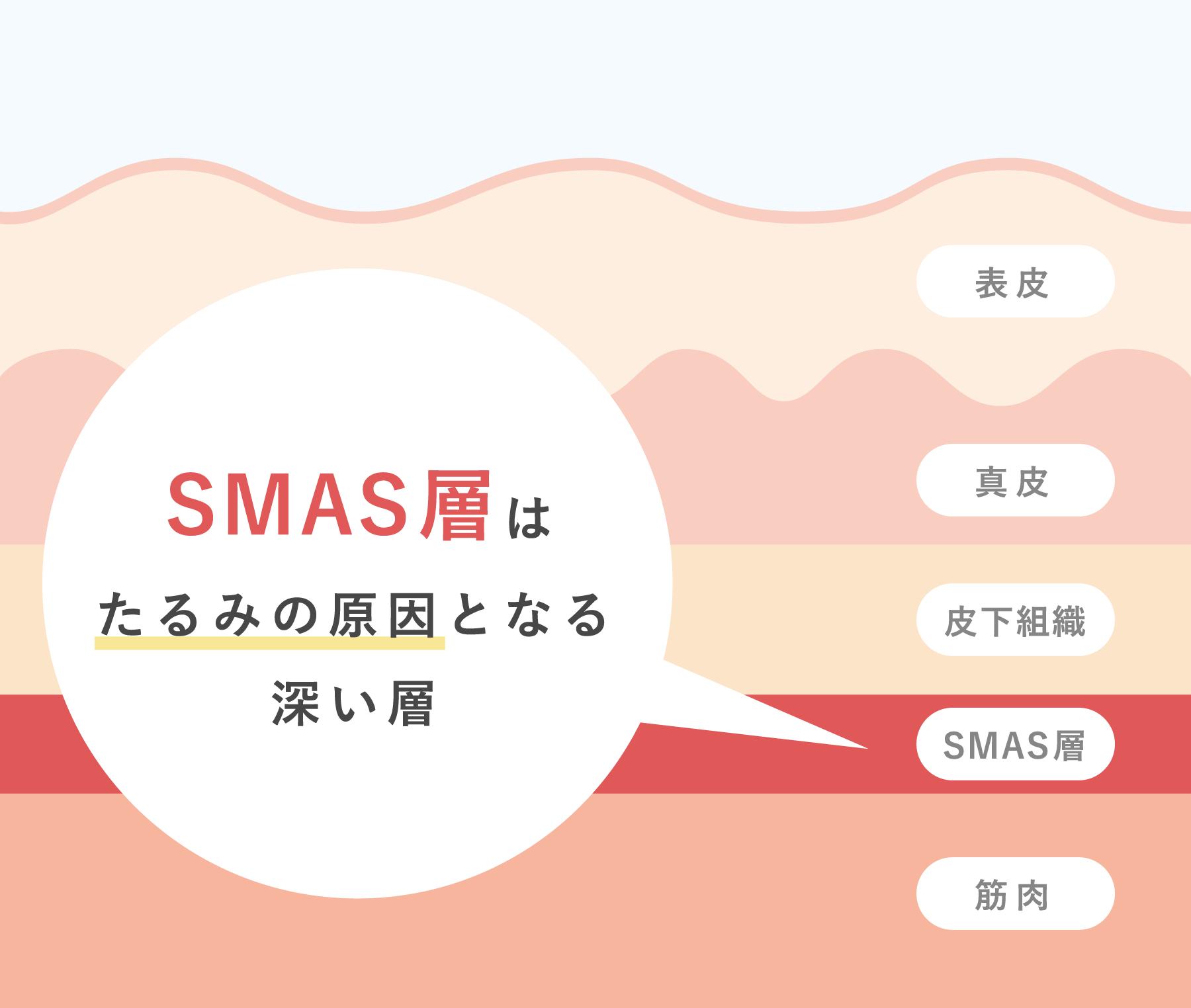 SMAS層はたるみの原因となる深い層